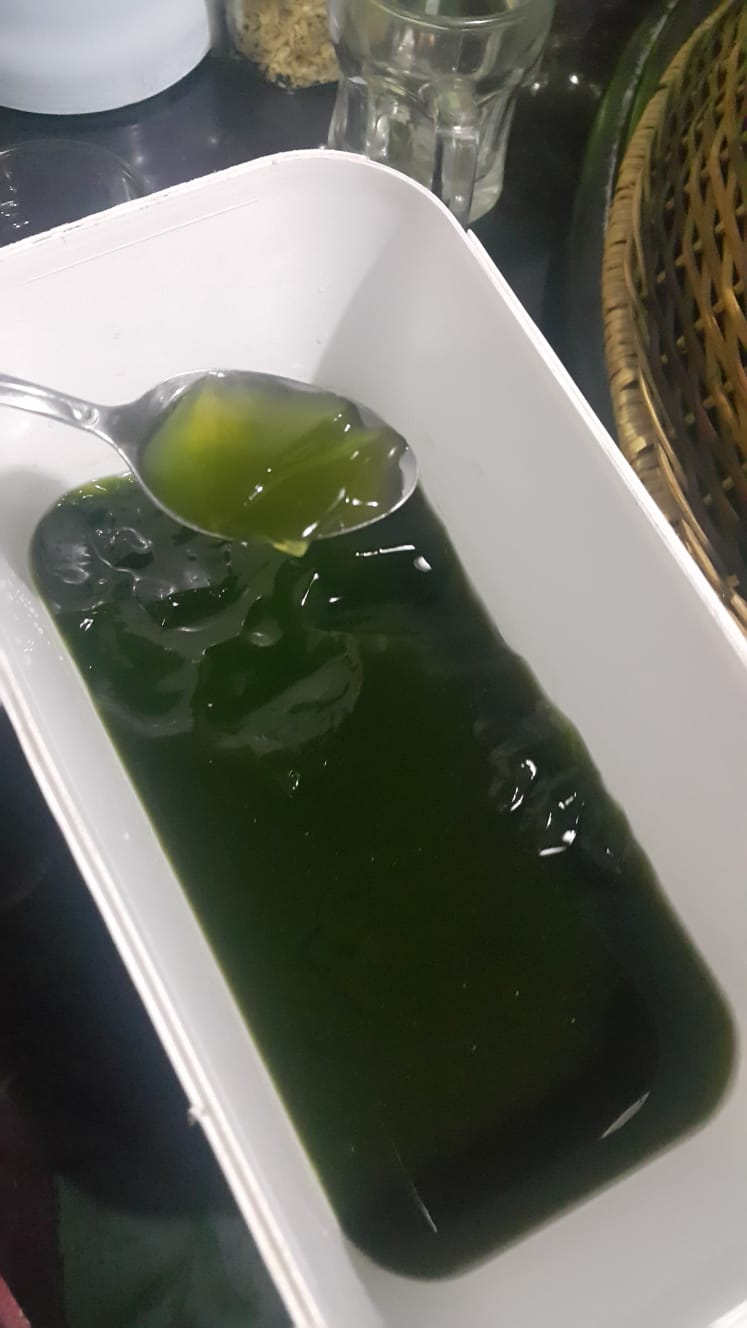 Cincau a Natural Jelly from Indonesia